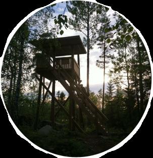 Iso-Valvatin lintutorni