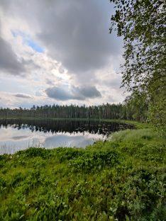 Ruutanan järvi.